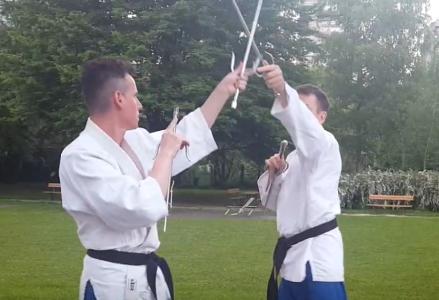 SAI škola tradicionalnog japanskog oružja